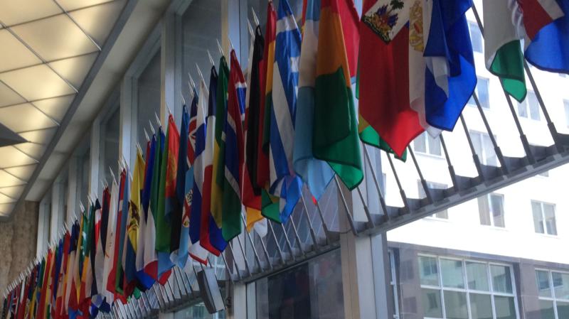 Introducing: The 2018 Alumni Global Council
