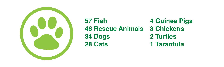 impact-report-2016-Pets.jpg